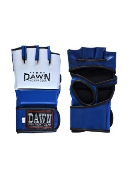 Professional Fight Glove 2