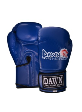 Training Boxing/Bag Gloves 1